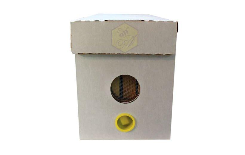 White Waxed Nuc Box 5 Frames Nuc Box Supplies Ango
